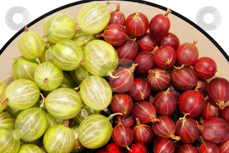 Gooseberry stock photo, red and green gooseberry isolated on white background by Jolanta Dabrowska