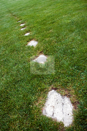 Stone Foot Path stock photo, A stone foot path through some green grass. by Todd Arena