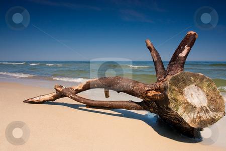 Baltic Sea stock photo, A beautiful beach in Baltic Sea, Poland by Adam Kraszewski