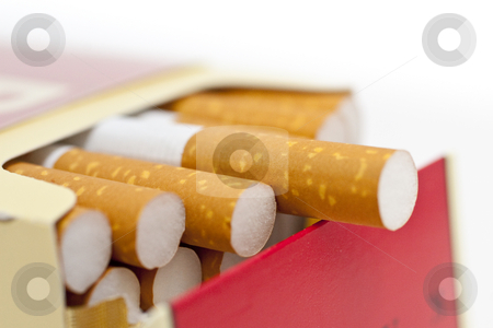 Single or pack of cigarettes stock photo, Single or pack of cigarettes with white background by Kenneth Ro