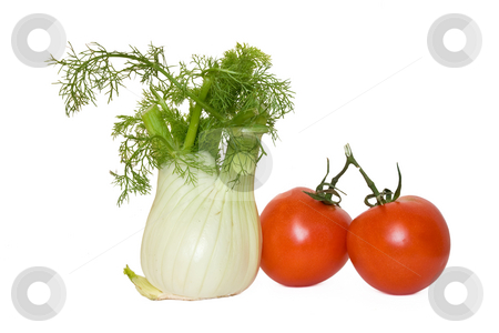 Tomato and fennel stock photo, Tomato and fennel isolated on white background by ANTONIO SCARPI