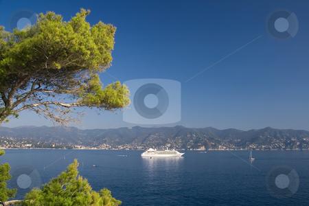 Golfo del Tigullio stock photo, Landscape of tigullio gulf from Portofino. A pine tree faces the sea with a white ship at anchor. Photo taken with polarizer filter. by ANTONIO SCARPI