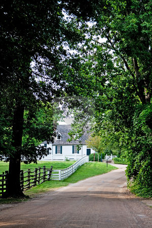 Driveway to farm house stock photo, Driveway surrounded by trees next to meadow surrounded by a white fence leading towards a white colonial farm house by Paul Hakimata