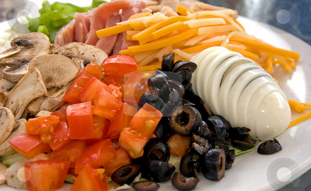 Chef Salad stock photo, Beautiful chef salad with tomatoes, sliced egg, cheese, olives, mushroom, turkey & ham. by Valerie Garner