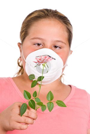 Allergies stock photo, Concept image of a girl with allergies featuring a young girl holding a rose in front of her face while she wears a dust mask by Richard Nelson