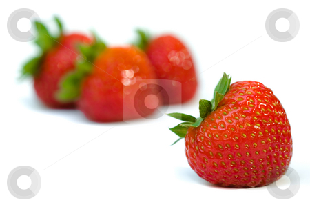 Isolated fruits - strawberries stock photo, Strawberries on white background. Front strawberry is sharp detail and three strawberries at the background are out of focus by Hieng Ling Tie