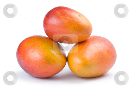 Isolated mango fruit stock photo, Isolated mango fruit on white background by Lawren
