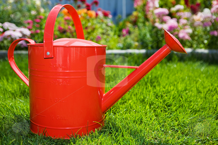 Summer gardening stock photo, Red watering can on the lawn with flower bed in the background by Steve Mcsweeny