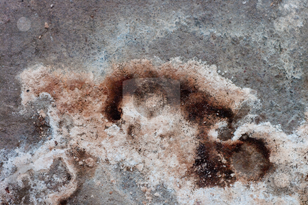 Water Dagamed Floor stock photo, Water damage on a concrete floor by Peter Soderstrom