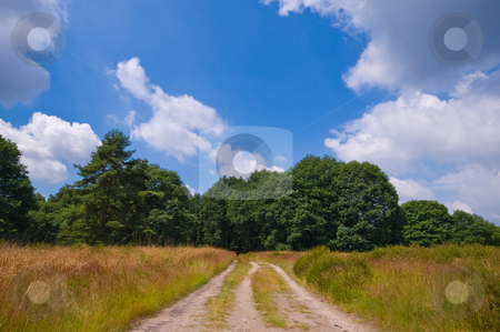 Nature sand path stock photo, Natural sand path to a forest on a  cloudy day by Karin Claus