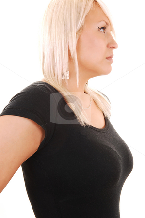 Portrait of blond woman. stock photo, A pretty blond woman in an black sweater standing in profile in the studio, shooing her nice breasts, for white background. by Horst Petzold