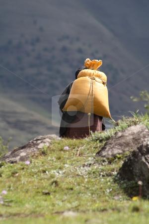 Bhutanese Farmer stock photo, A farmer carrying a load in Bhutan by Ashleigh DeFries