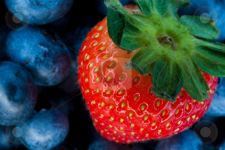 Strawberry and bluberry series stock photo, Mixed berries series by Jose Wilson Araujo