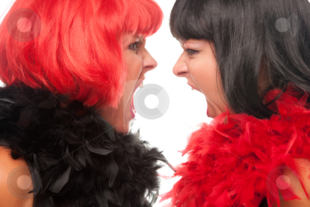 Red and Black Haired Women Screaming at Each Other stock photo, Red and Black Haired Women with Boas Screaming at Each Other on a White Background. by Andy Dean