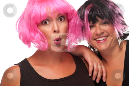 Portrait of Two Pink And Black Haired Smiling Girls stock photo, Portrait of Two Pink And Black Haired Smiling Girls Isolated on a White Background. by Andy Dean