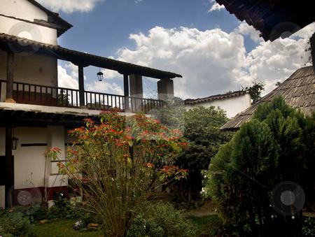 Red Poinsettia Tree Hacienda Art House Patzcuaro Mexico stock photo, Red Poinsettia Tree, Public Art House, La Casa de Los Once Patios, House of the Eleven Courtyards, Patzcuaro, Mexico by William Perry