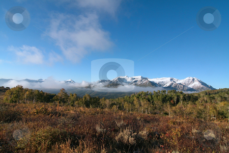 Rocky Mountain Fall stock photo, Fall colors in the Rocky Mountains by Mark Smith