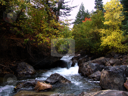 Mountain  River stock photo, Mountain River in the summer with blue sky and trees in the background by Mark Smith