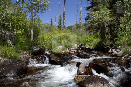 Mounrain  River stock photo, Mountain River in the summer with blue sky and trees in the background by Mark Smith
