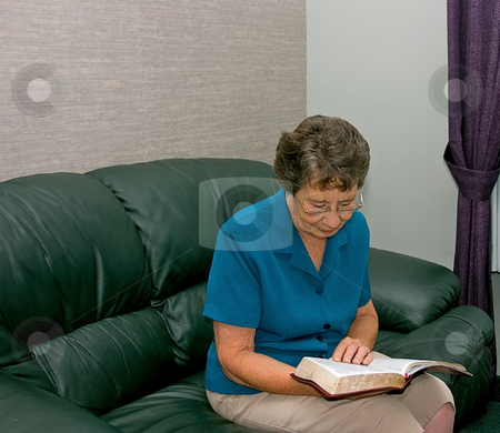 Senior Woman Reading a Book stock photo, This photo shows a senior citizen Caucasian woman reading a book on a green leather couch. by Valerie Garner