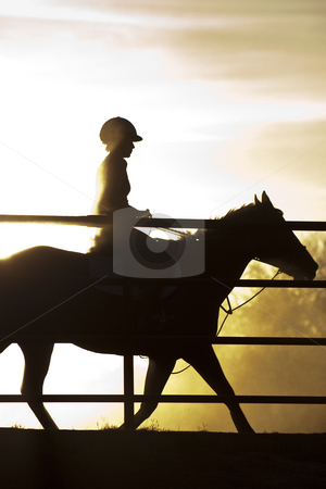 Horse and Rider stock photo, A horse and rider in silhouette behind a fence by Patrick Noonan