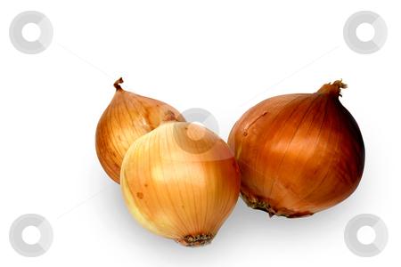 Onion stock photo, Three onions on white background by Minka Ruskova-Stefanova