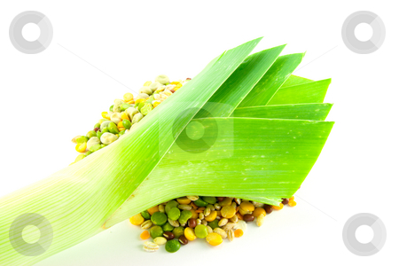 Leek and Soup Pulses stock photo, Assorted soup pulses in a heap with a leek on a white background by Keith Wilson