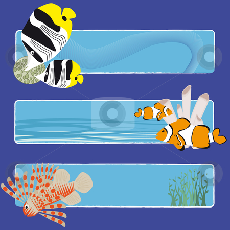 Fish banners 3 no text stock vector clipart, Three tropical fish banners no text indicate sea world creatures by Karin Claus