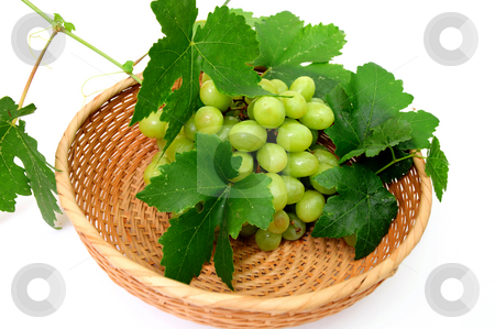 Green Seedless Grapes stock photo, Bunch of seedless grapes and grapevine in a wicker basket on a white background by Lynn Bendickson