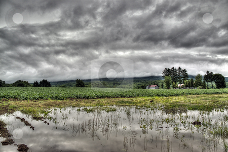Nature under a stormy sky  stock photo, Farmland under a grey cloudy sky by Paul Malandain