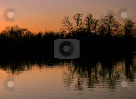 Summer sunset stock photo, A sunset at a lake with sillhouettes of trees by Alexander Zschach