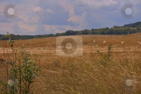 Agricultural plains stock photo, Agricultural plains with cloudy sky by Minka Ruskova-Stefanova