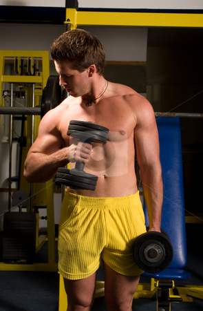 Bodybuilder training stock photo, Young Bodybuilder training by Istv??n Cs??k