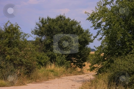 Country road stock photo, Oad in farmland with cloudy sky by Minka Ruskova-Stefanova