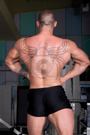 Bodybuilder posing stock photo, Young bodybuilder posing by Istv??n Cs??k
