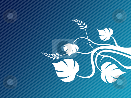 White flower stock photo, White flower on blue background by Minka Ruskova-Stefanova