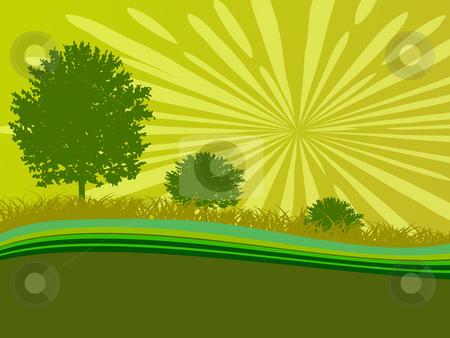 trees stock photo, Background trees by Minka Ruskova-Stefanova