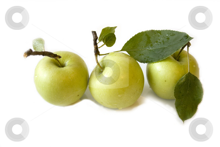 Three apples stock photo, Three apples on white background by Minka Ruskova-Stefanova