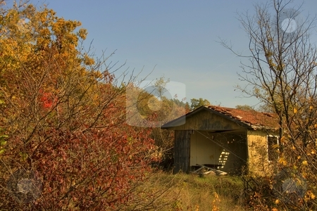 Ruined house in autumn forest stock photo, Ruined house in autumn forest by Minka Ruskova-Stefanova