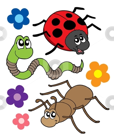 Various bugs collection stock vector clipart, Various bugs collection - vector illustration. by Klara Viskova