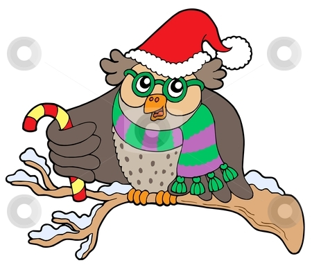 Owl in Christmas outfit stock vector clipart, Owl in Christmas outfit - vector illustration. by Klara Viskova
