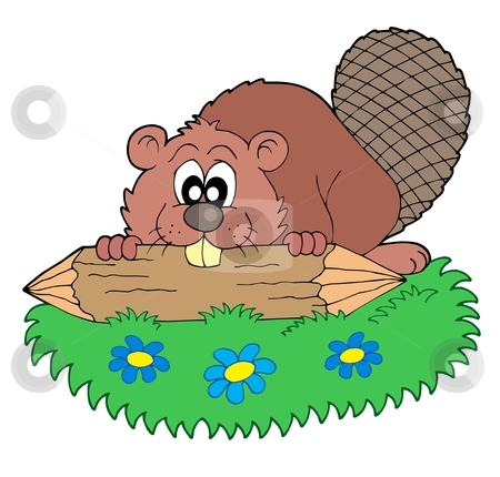 Beaver with log vector illustration stock vector clipart, Beaver with log - vector illustration. by Klara Viskova