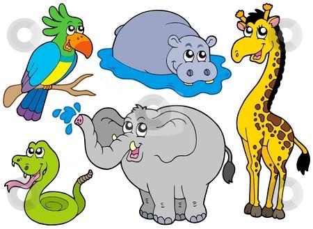 Wildlife animals collection stock vector clipart, Wildlife animals collection - vector illustration. by Klara Viskova