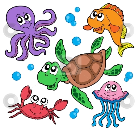 Marine animals collection stock vector clipart, Marine animals collection - vector illustration. by Klara Viskova