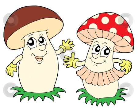 Mushroom and toadstool vector illustration stock vector clipart, Mushroom and toadstool - vector illustration. by Klara Viskova