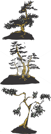 Bonsai stock vector clipart, Three scratch board images of Japanese bonsai trees. by Jeffrey Thompson