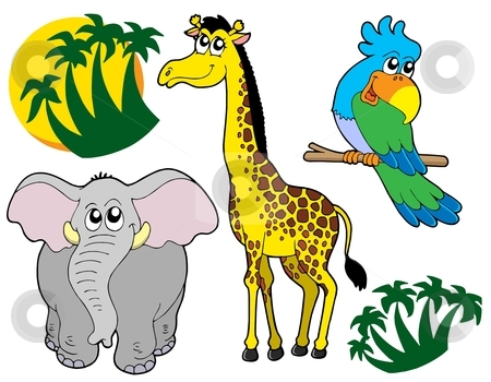 African animals collection 3 stock vector clipart, African animals collection 3 - vector illustration. by Klara Viskova