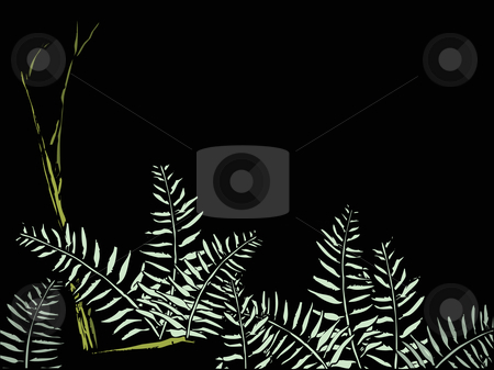 Ferns in the Forest. stock vector clipart, Ferns on the forest floor on a black background that is suitable for text or another image. by Jeffrey Thompson