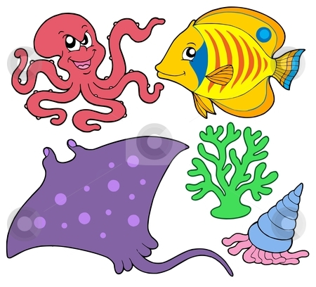 Cute marine animals collection 4 stock vector clipart, Cute marine animals collection 4 - vector illustration. by Klara Viskova