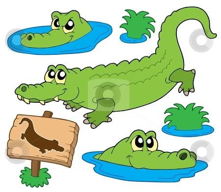 Crocodile collection stock vector clipart, Crocodile collection on white background - vector illustration. by Klara Viskova